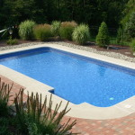 18x36 Pool with Radius Corners - Birdsboro, PA